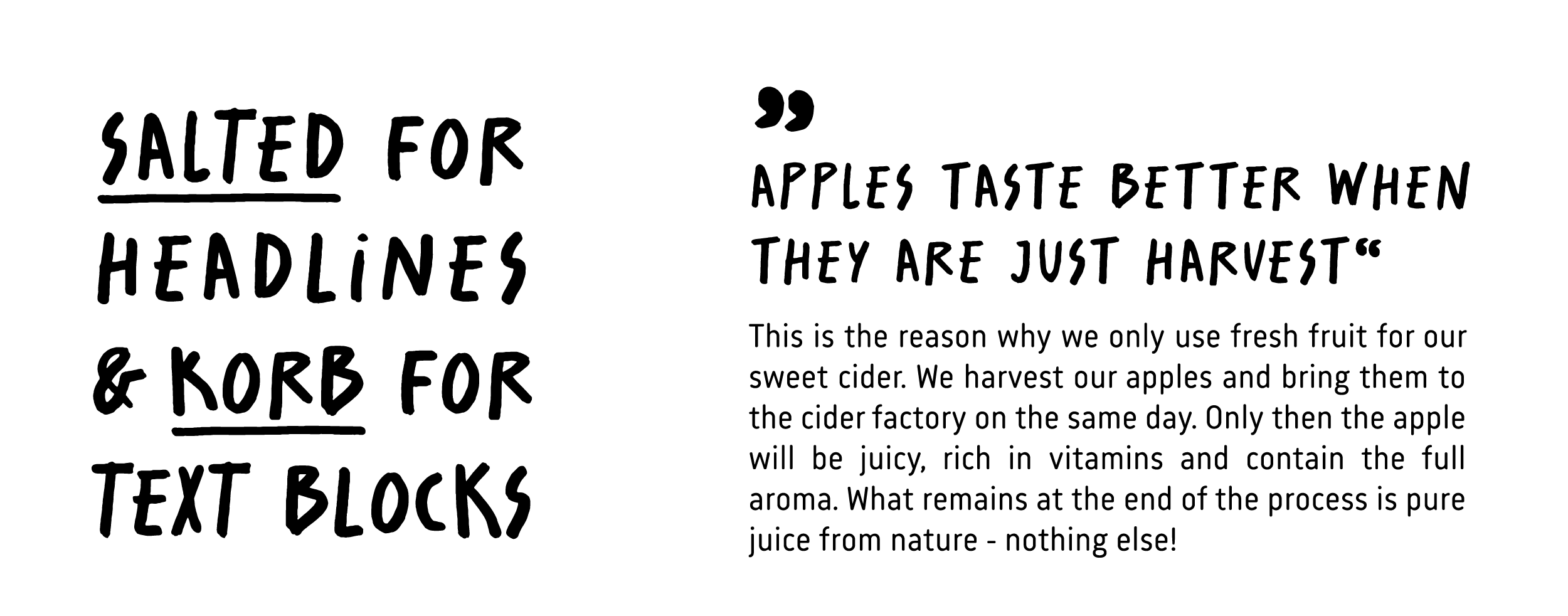 DURSTIGER-HASE-GPU-Design-typography